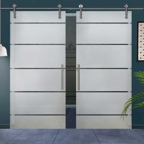 Double Glass Barn Door (Model DSGD-V1000-0003 Semi-Private)