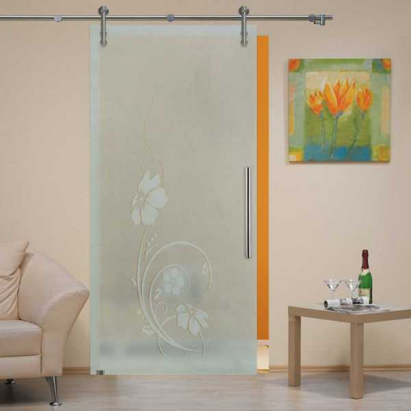 Sliding Glass Barn Door SGD-V1000-0030