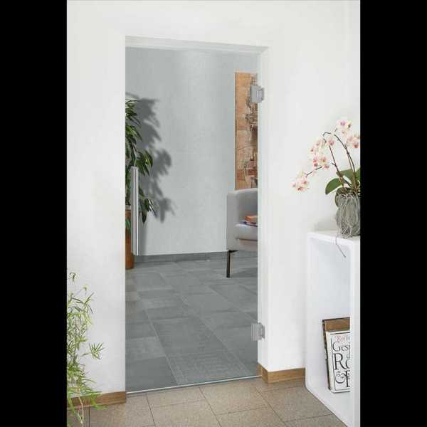 Pivot Glass Door SD-0150