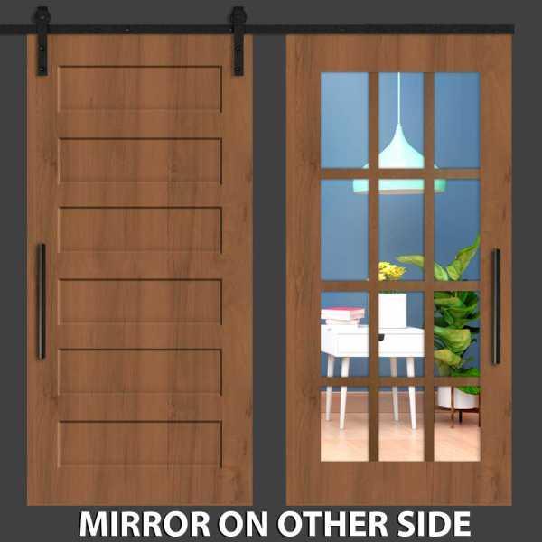 Hybrid with Six Panel Mirrored Barn Door and Cross Line Frame