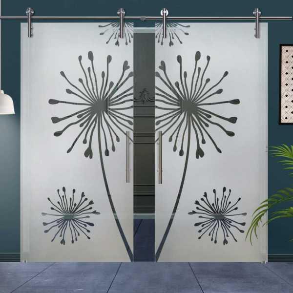 Double Glass Barn Door (Model DSGD-V1000-0037 Semi-Private)