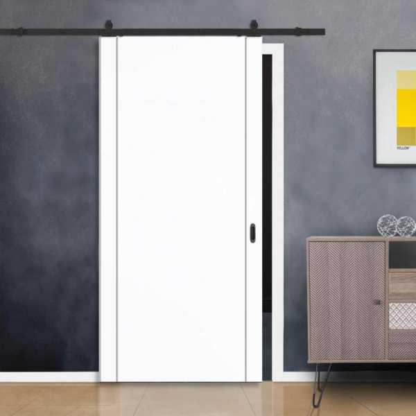 Flush Barn Door with 2 Vertical Stainless Steel Strips + Carbon Steel Hardware