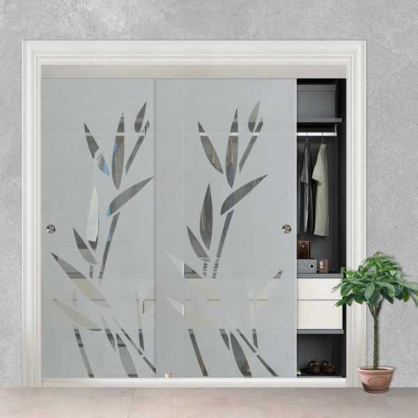 Frameless 2 Leaf Sliding Closet Bypass Glass Door with Hardware CGD-0008