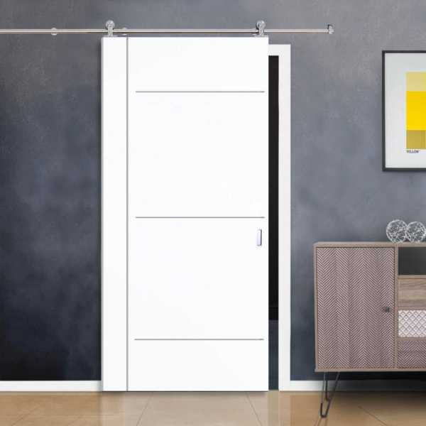 Flush Barn Door with Stainless Steel Strips + Stainless Steel Hardware Coated with polyurethane coating