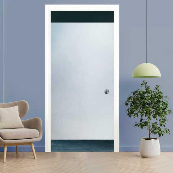 Pocket Glass Barn Door (Model PSGD-0092 Semi-Private)