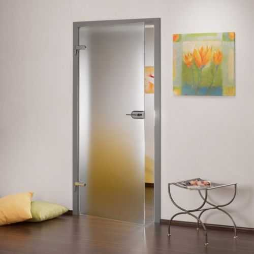 Interior Full Private Frosted Hinged Glass Door