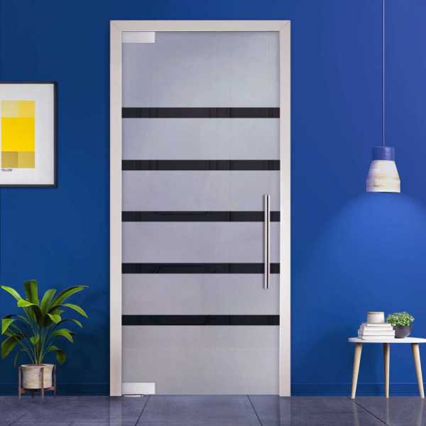 Pivot Glass Door (Model PD-0051 Semi-Private) with Handle Bar