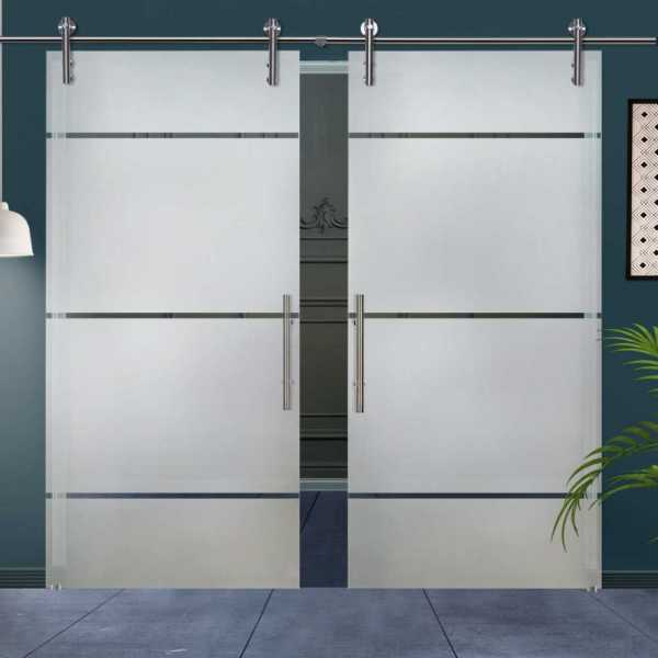 Double Glass Barn Door (Model DSGD-V1000-0023 Semi-Private)