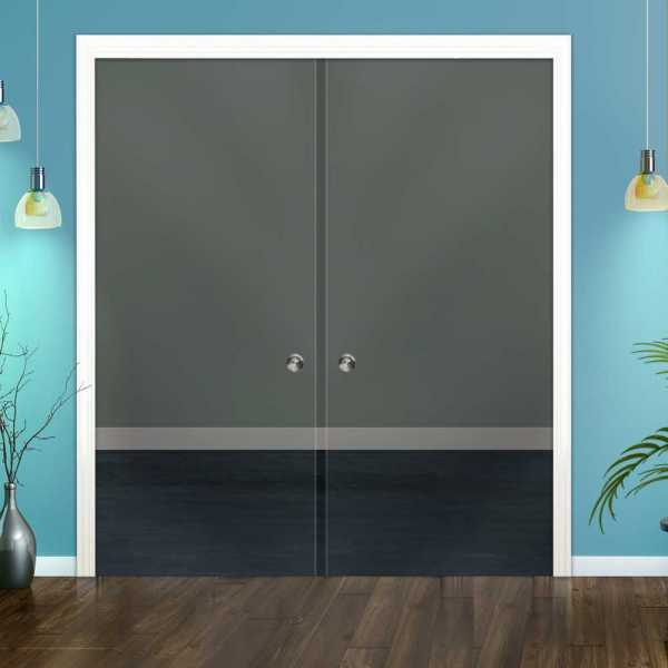 Clear Double Pocket Sliding Glass Door DPSGD-0110