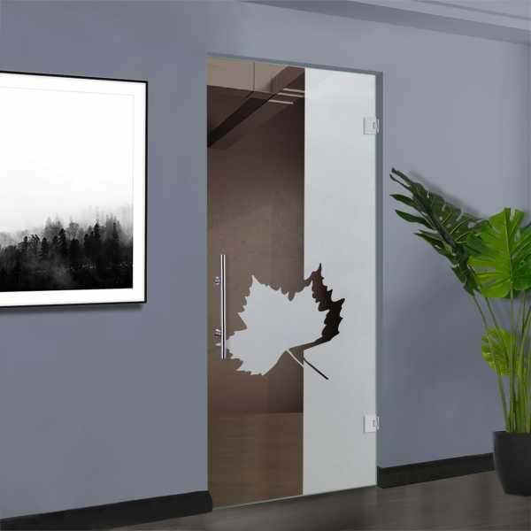 Swing Glass Door SD-0050