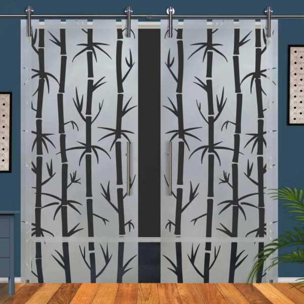 Double Glass Barn Door (Model DSGD-V1000-0062 Semi-Private)