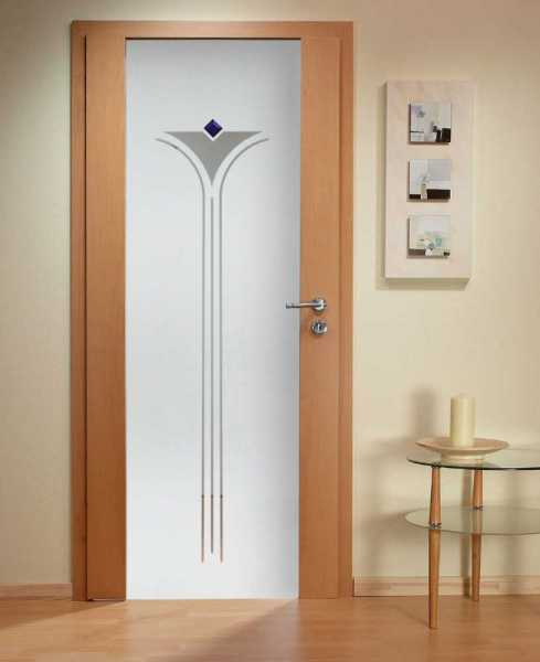 Solid Wood Hinged Door with Glass Insert HWDI-008