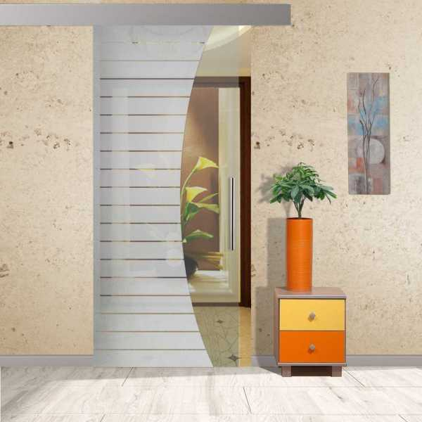 Sliding Glass Barn Door SGD-ALU100-0020