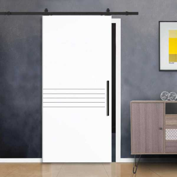Flush Barn Door with 5 Stainless Steel Strips + Carbon Steel Hardware