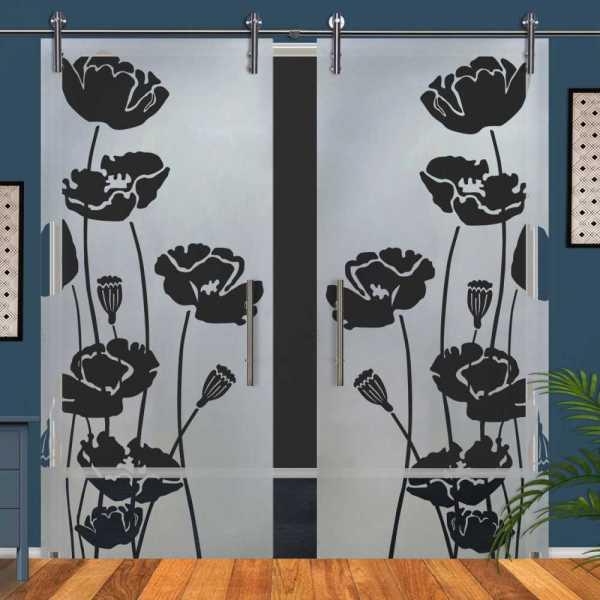 Double Glass Barn Door (Model DSGD-V1000-0045 Semi-Private)