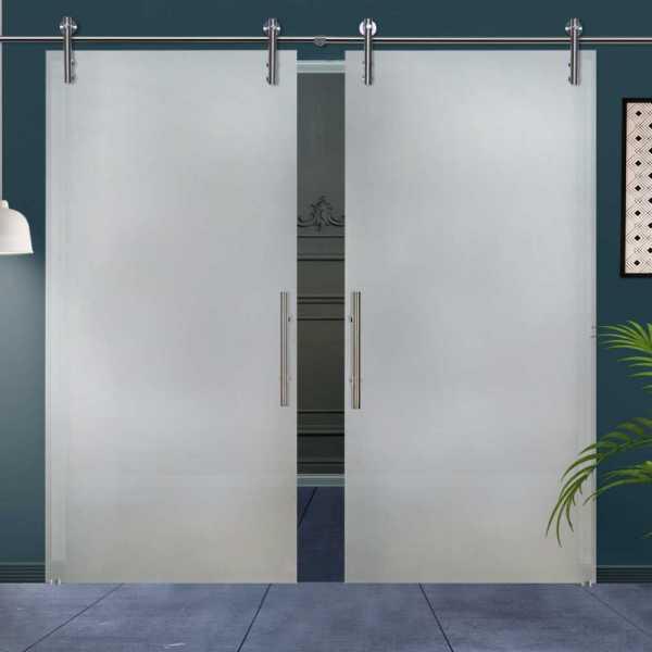 Double Sliding Glass Barn Door DSGD-V1000-0009