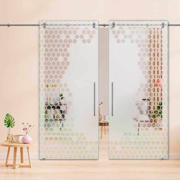 Glass Barn Door (Model DSGD-V2000-0011 Semi-Private)