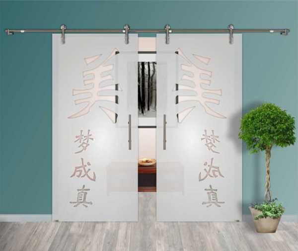 2 - Leaf Glass Barn Doors + Partially Frosted + Clear Lines Design