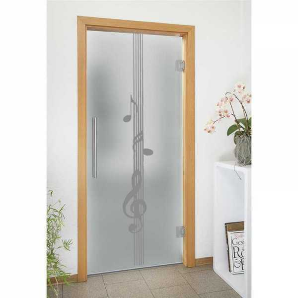 Swing Glass Door SD-0103