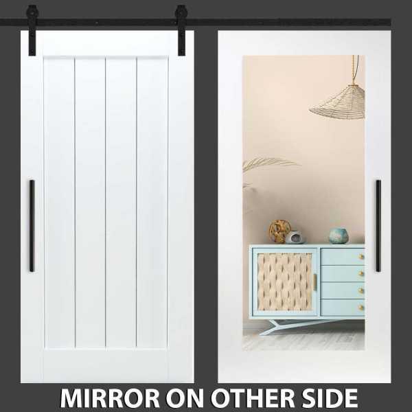 Vertical Mirror Barn Door with Mirror Insert