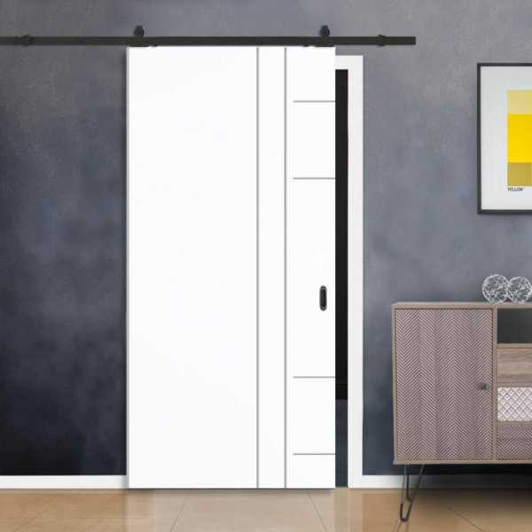 Flush Barn Door with Stainless Steel Strips + Carbon Steel Hardware