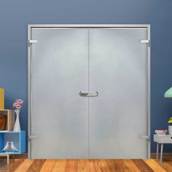 Frosted Double Hinged Glass Door