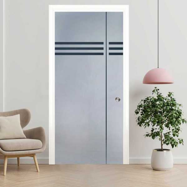 Pocket Glass Barn Door (Model PSGD-0001 Semi-Private)