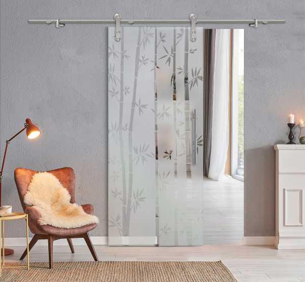 Glass Barn Door (Model SGD-V1000-0317 Semi-Private)