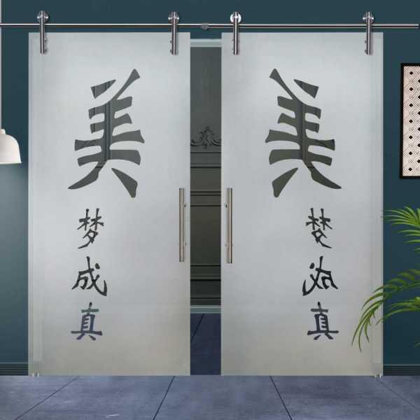 Double Glass Barn Door (Model DSGD-V1000-0013 Semi-Private)